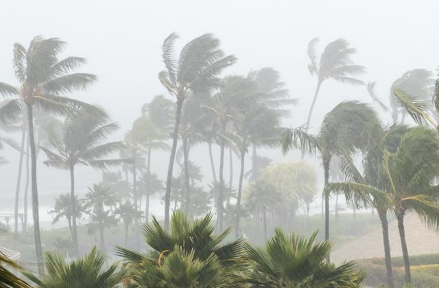 На Индию обрушился сильный циклон