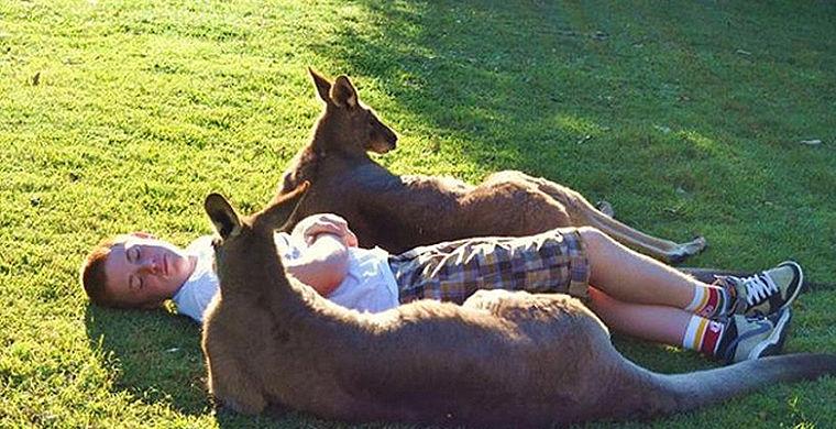 лайфхаки, сидней, сэкономить в сиднее, австралия