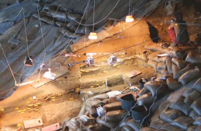 Люди каменного века готовили корнеплоды на гриле