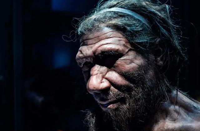 Ушная инфекция могла стать причиной вымирания Неандертальцев
