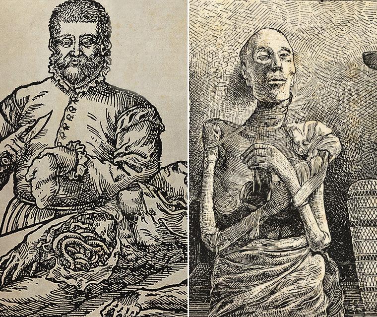 мумии ценились в Европе