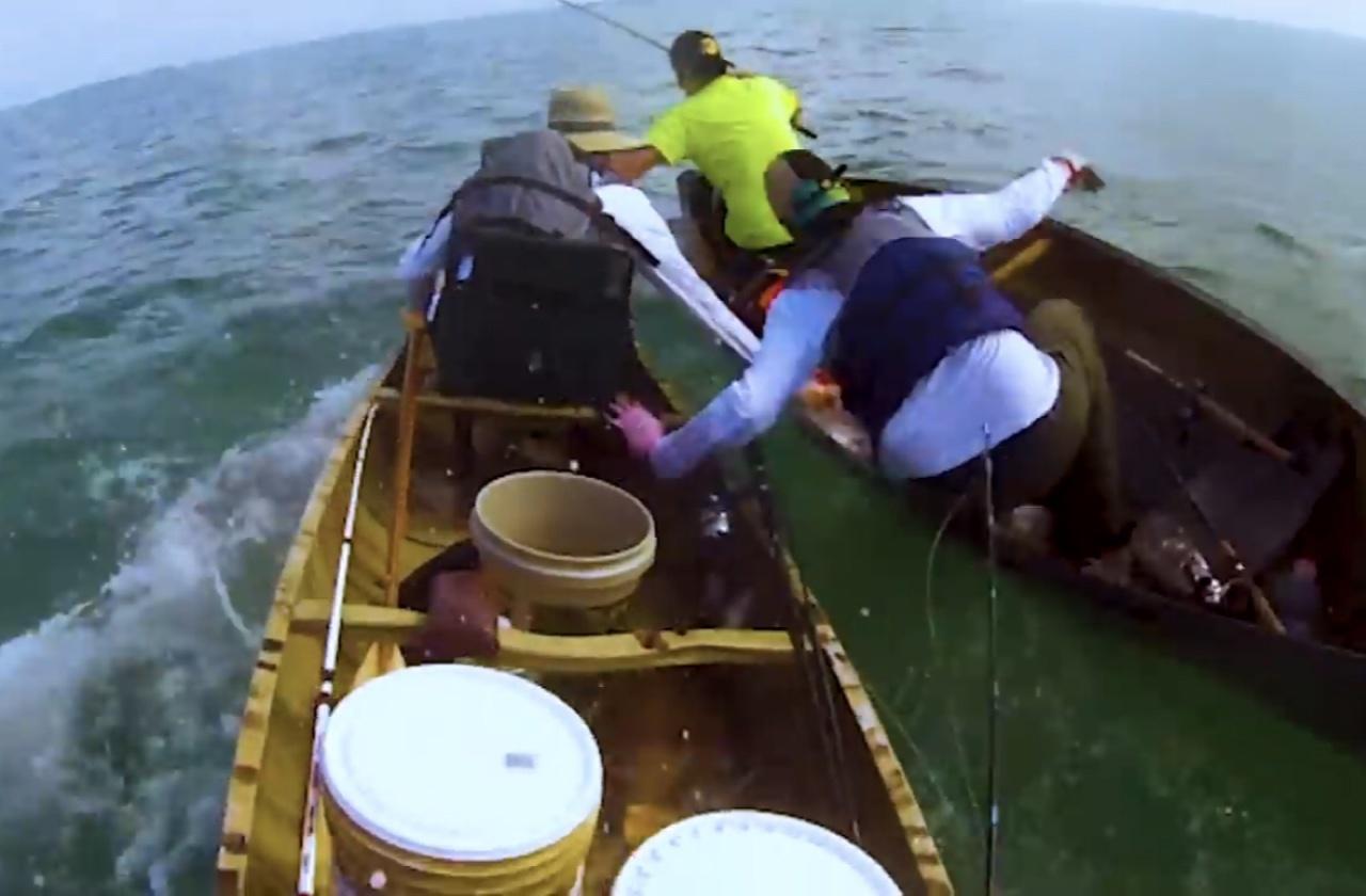 Акула пытается перевернуть лодку с рыбаками