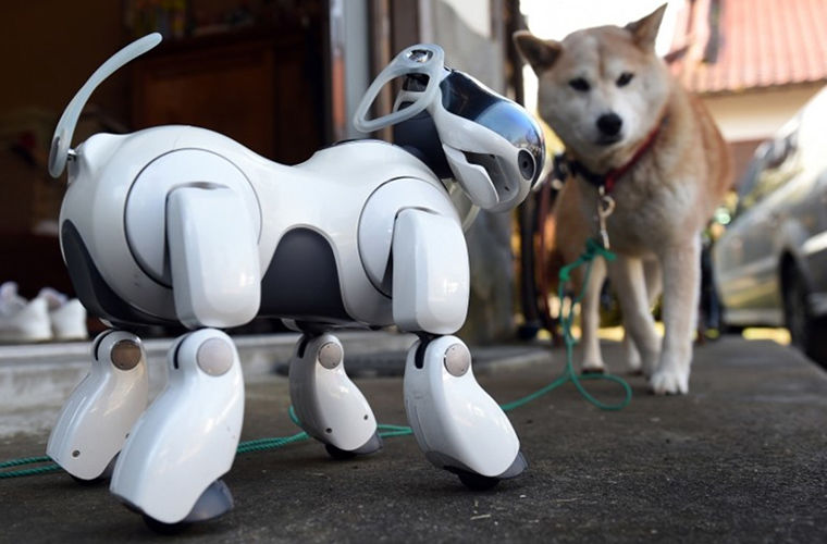 собака-робот Айбо