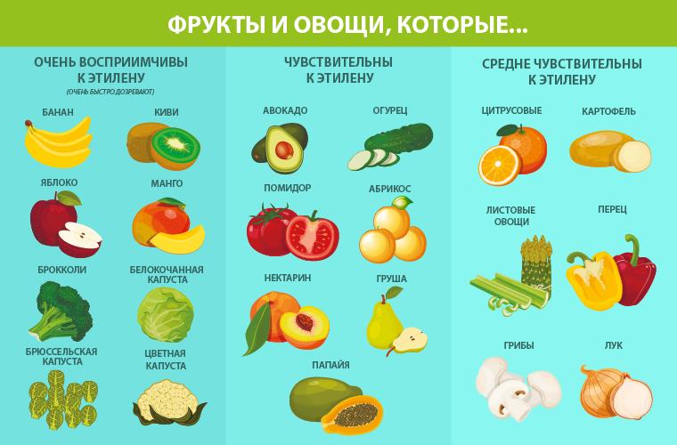 Таблица. Фрукты и овощи, восприимчивые к этилену