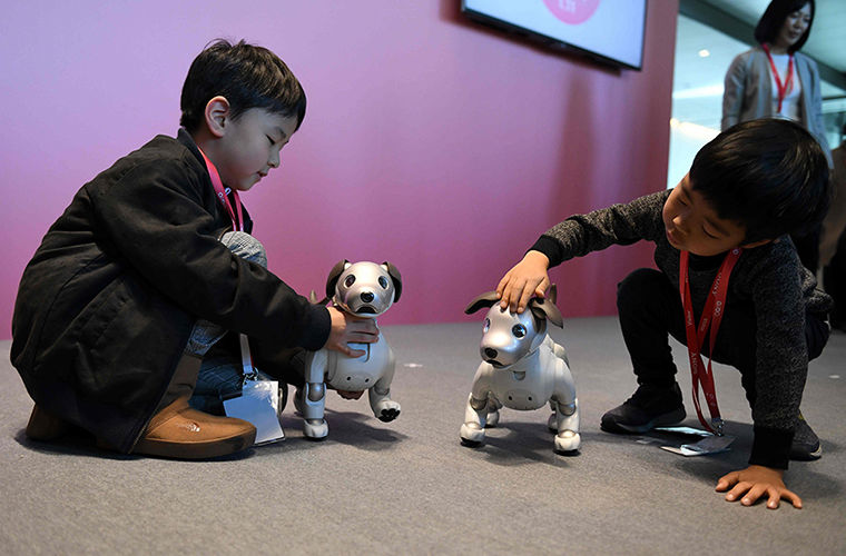 Японские собаки-роботы